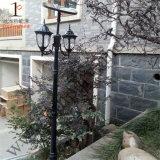 indicatore luminoso solare del giardino 10W con le doppie teste (DZ-TT-212)