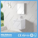 Populäre heiße Verkaufs-Badezimmer-Eitelkeit mit Pferden-Metallfach (BF368D)