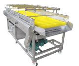 Le meilleur type nettoyeur de qualité de fruit de balai de roulement de machine à laver