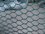 Acoplamiento de alambre de pollo/tela metálica hexagonal