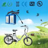 Pack batterie fait sur commande de lithium du spécialiste LiFePO4 pour la bicyclette électrique (24V 60Ah)