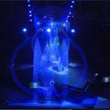 ホテルの装飾のデジタル水カーテンの図形噴水