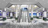 Beste verwendete niedrige Kosten-Rolltreppe und Handelsrolltreppe mit Grad 30