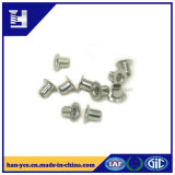 Rebites tubulares/Semi-Tubular do zinco da alta qualidade em China