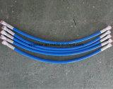 1.5FT con il tubo flessibile dello spruzzo di Condcutive
