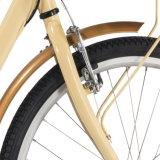 Горячий привод вала 2016 отсутствие цепного велосипеда Bike регулярного пассажира пригородных поездов для женщин девушок