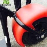 Motorino elettrico di vendita caldo di Citycoco della gomma grassa
