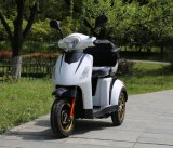 Brushless Elektrische Autoped van Trike Hadicapped