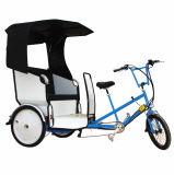 Vendita calda Pedicab da vendere in triciclo elettrico del passeggero delle Filippine
