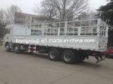 M3000 310HP 8X4の棒の貨物自動車の貨物トラックの昇進