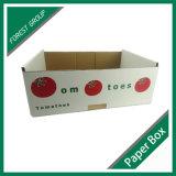 De in het groot 5-vouw Plantaardige Doos van het Karton voor Tomaten
