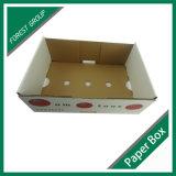 卸し売りトマトのための野菜カートンボックスに5執ように勧めなさい