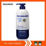 Os produtos maiorias 2 do cuidado de cabelo em 1 hidratam o champô