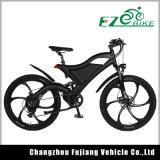 Bicicleta eléctrica, bicicleta eléctrica de la montaña, bici de E