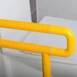 De antibacteriële en Staven van de Greep van de Veiligheid van het Nylon en van het Roestvrij staal U-vormige voor Toilet in Badkamers
