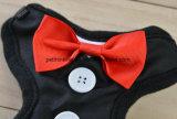 Conjunto del harness del pecho de Airmesh del vestido de noche del amante del animal doméstico