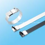 Tempo - cinta plástica do aço inoxidável da economia com a curvatura da borda da Catraca-Lokt