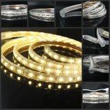 건물 훈장을%s W/Ww Dimmable 5630SMD LED 지구 최고 광도