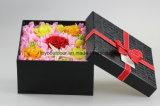 A haste longa das flores frescas de baixo preço preservou a flor de China
