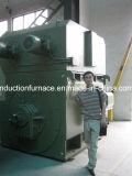 Motore a corrente alternata Della gabbia di scoiattolo di alta qualità 1000rpm