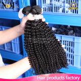 Cabelo Curly Kinky malaio garantido cor do Virgin da qualidade de #1b (QB-MVRH-DW)