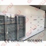 Chambre froide/congélateur/congélateur à air forcé