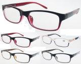 형식 LED 플라스틱 Eyewear 독서 (RP444002)