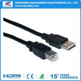 USB 3.0 un mâle AM à la nomenclature de mâle de B d'USB 3.0