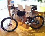 مؤخّر كهربائيّة 20 بوصة [فرونت وهيل هوب] محرّك 350 واط كهربائيّة درّاجة تحميل عدة