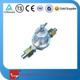 Druckregler für LNG Fahrzeug Zylinder