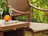 Landhaus im Freien Hand-Spinnende PET Rattan-Sprung-Stuhl-Möbel