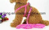 Вороты собаки Dp-CS1310 пятиконечной звезды PVC светящие