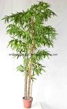 Árbol de bambú afortunado artificial de la alta calidad