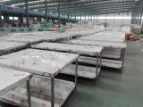 Tabella di vendita calda della preparazione dell'acciaio inossidabile con una garanzia di 3 anni