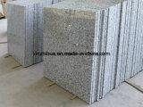 대중적인 자연적인 중국 Biaco Sardo G439 화강암 도와, 마루 도와, 싱크대, Worktop