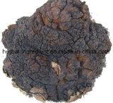 Estratto Betulin 50%-98%, acido della corteccia di betulla bianca di Betulinic