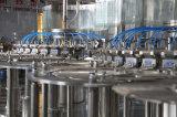 고품질 주스 음료 채우는 병조림 공장