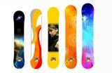 Het aangepaste Nieuwe Patroon van Kleuren in de Etikettering van de Vorm van Koel Skateboard