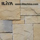 城の石塀のクラッディングの建築材料の壁のタイル