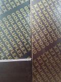 (1250X2500mm) Bruin Film Onder ogen gezien Triplex/het Triplex van de Bekisting voor Bouwmateriaal