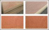 멕시코 시장을%s 고품질을%s 가진 18mm 연필 삼목 합판