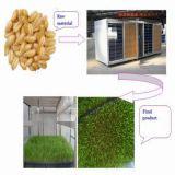 자동적으로 콩나물 기계 자동적인 보리 싹이 트기 기계 (JXYJ-60A)