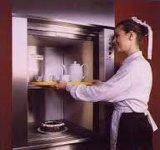 Fjzy Montacargas o ascensores de servicio --- 100kg