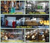Grande centrale de biogaz pour produire de l'électricité, usine de biogaz au Goudjerate