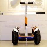 Carro eléctrico de la vespa eléctrica barata del vagabundo del viento
