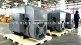 Высоковольтные тепловозные генераторы с Pmg