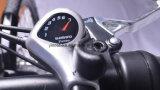 250W 28インチのLitium電池のディスクブレーキの電気マウンテンバイク