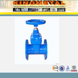 ANSI Flanged Resilient Seated Water 150lb Gate Valve van de FM UL