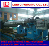 Muffa lunga forgiata del tubo di pezzo fucinato della barra del foro usata sulla macchina di pezzo fuso centrifugo