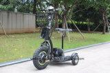 Rueda eléctrica 3 con el triciclo del pabellón